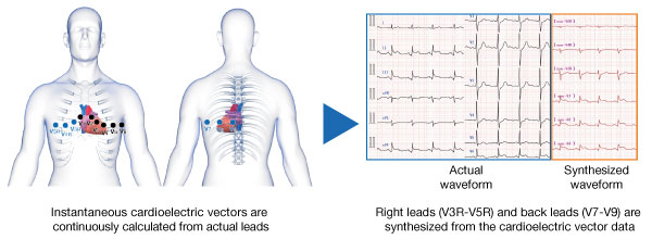 Instantaneous cardiolelectric vectors
